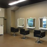 Salon Pic 2