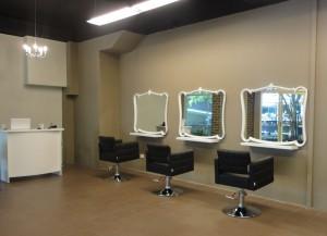 Salon Pic 2